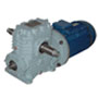 motor-reduktor-2mch160